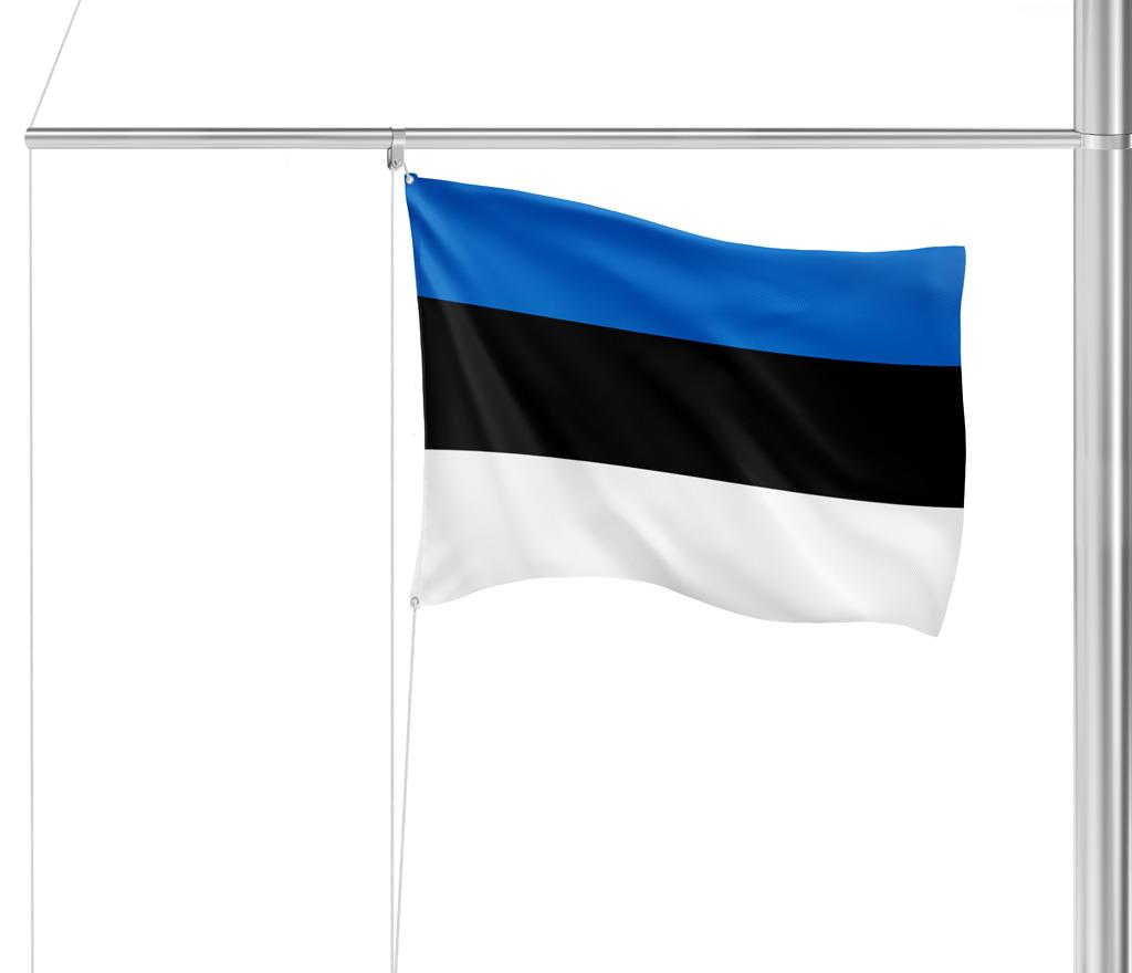 Flagge Estland