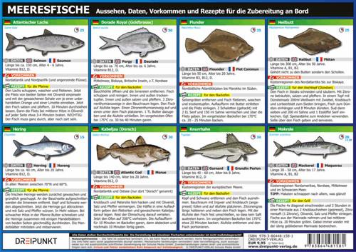 Meeresfische (Set DIN A4)